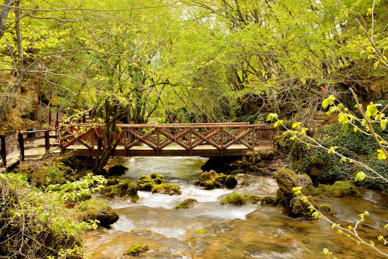 Natureza em Serbia imagem de stock royalty free