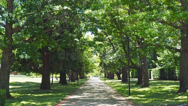 Natureza exterior de Canberra imagem de stock royalty free