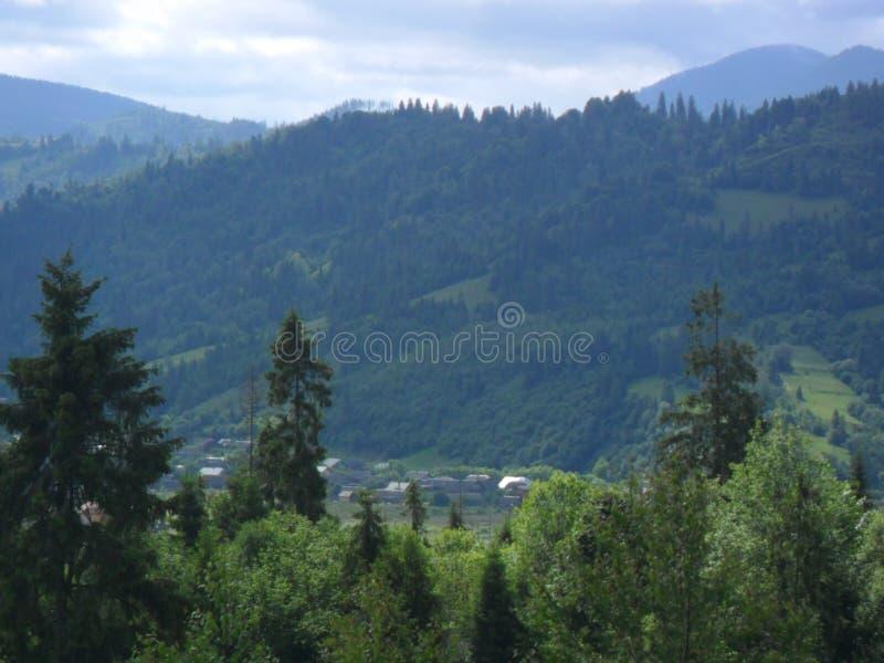 A natureza mágica e inesquecível das montanhas Carpathian fotos de stock