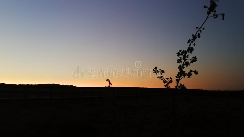 A natureza maravilhosa de Portugal foto de stock