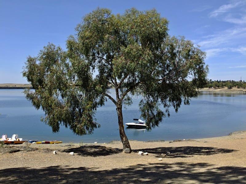 Natureza maravilhosa no lago de Orellana, Badajoz Espanha foto de stock
