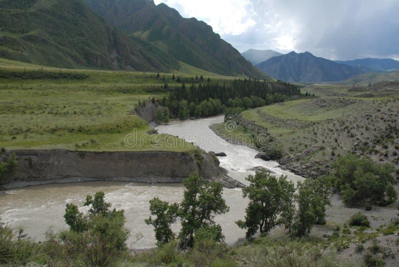 Natureza nas montanhas de Altai fotografia de stock royalty free