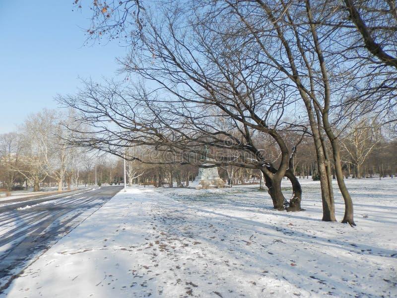 Natureza no inverno foto de stock royalty free
