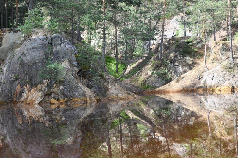 Natureza no Polônia, lago verde imagens de stock royalty free