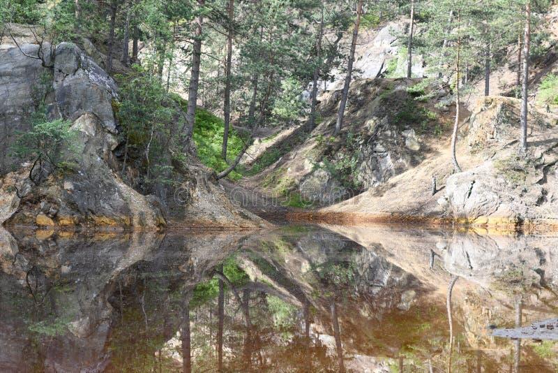 Natureza no Polônia, lago verde fotos de stock