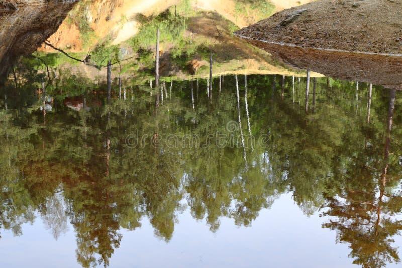 Natureza no Polônia, lago verde foto de stock royalty free
