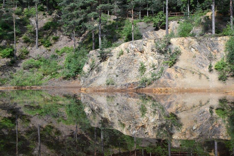 Natureza no Polônia, lago verde imagem de stock