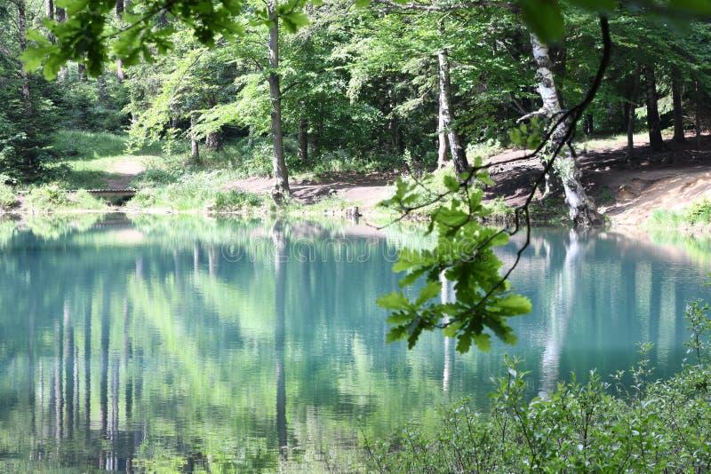 Natureza no Polônia, lago verde fotos de stock royalty free