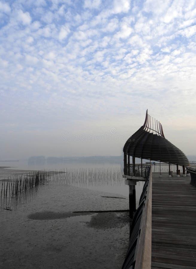 Natureza, passagem birdwatching dos manguezais fotos de stock royalty free