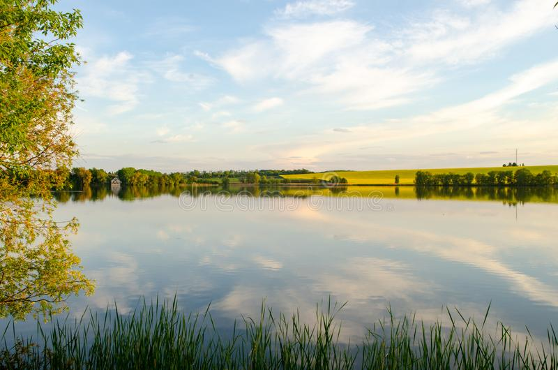 Natureza selvagem, campo amarelo e céu com reflexão no lago fotografia de stock royalty free
