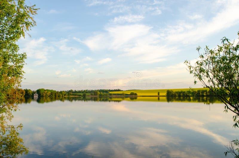 Natureza selvagem, campo amarelo e c?u com reflex?o no lago imagens de stock