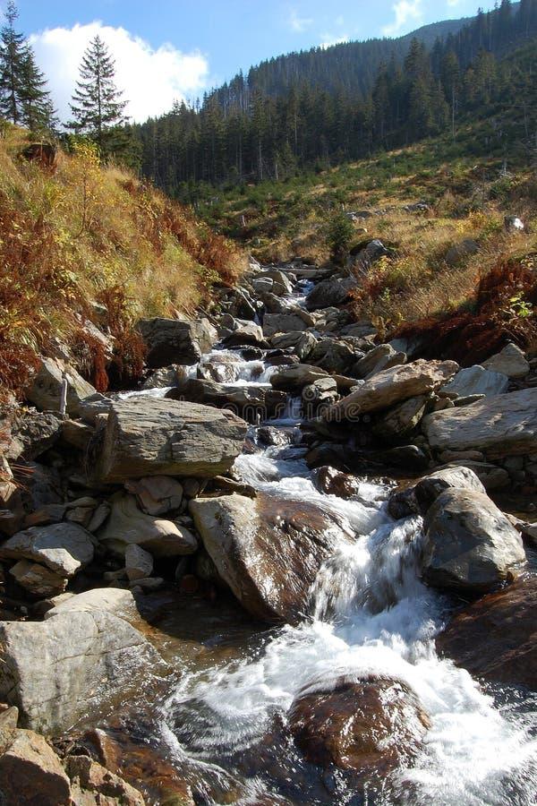 Natureza selvagem em montanhas gigantes fotos de stock
