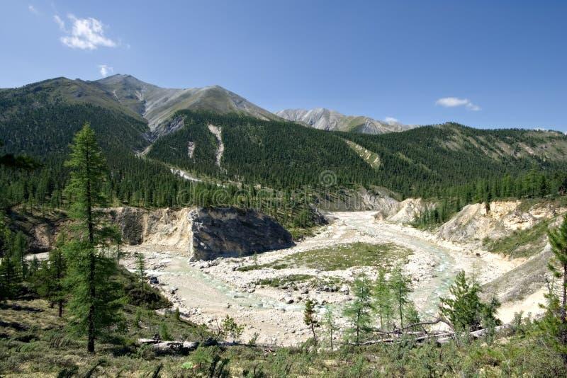Natureza selvagem. Montanhas de Sayan, Sibéria, Russia.Taiga. imagem de stock