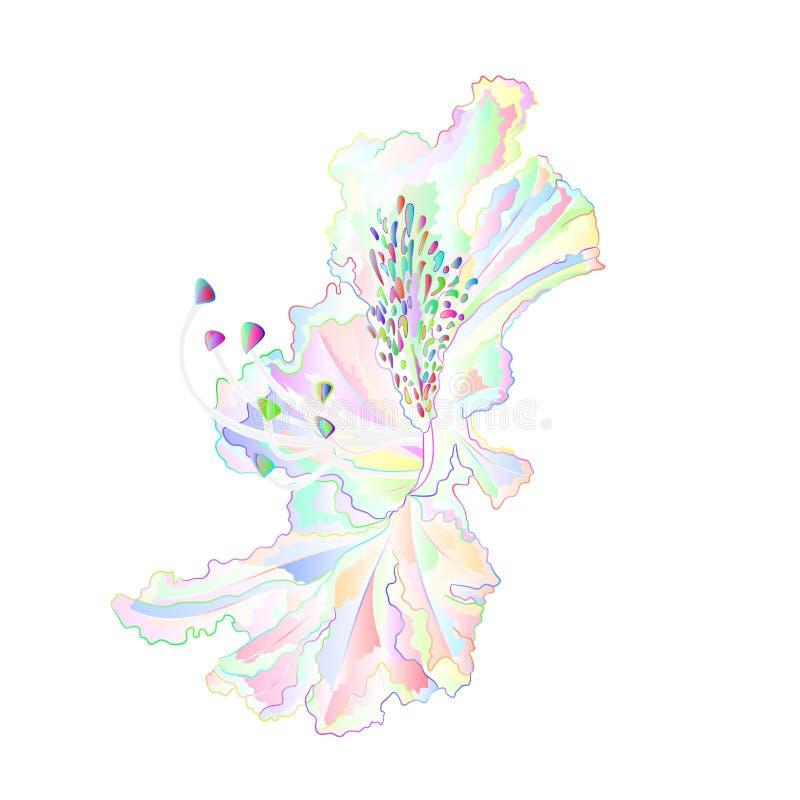 Natureza tropical da planta da casa da decoração da palma da folha e ilustração do vetor do vintage do esboço editável ilustração stock