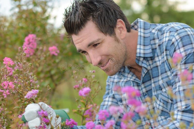 Naturforskare observera den lösa blomman royaltyfri fotografi