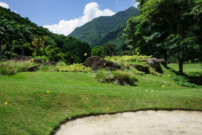 Naturfotografi, golfbana och kopplar av i Caracas, Venezuela royaltyfri foto