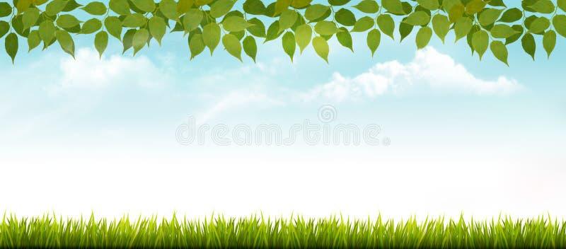 Naturfrühlingshintergrund mit Gras und Blättern vektor abbildung