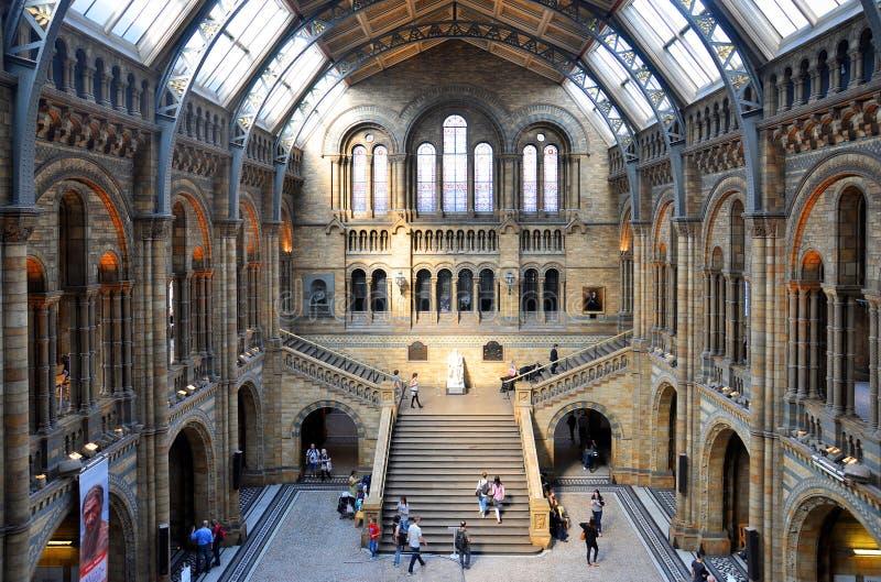 Naturgeschichtemuseum, London stockbild