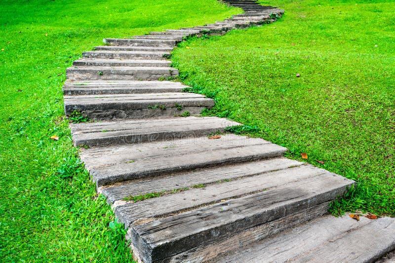 Naturhintergrund mit altem Steingehweg im grünen Gras lizenzfreie stockfotografie
