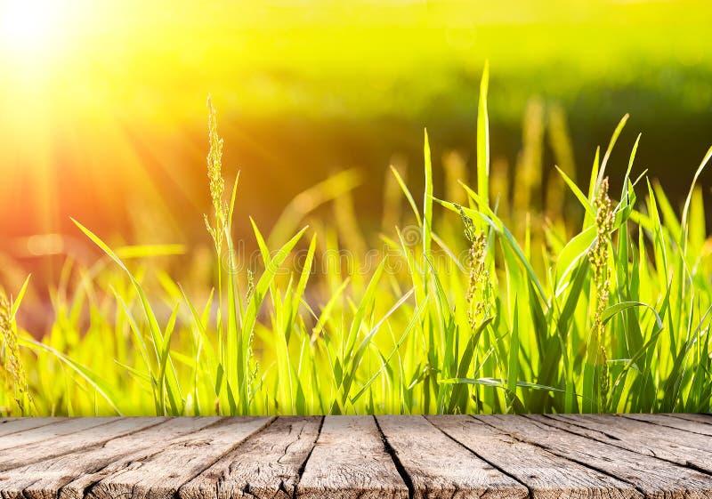 Naturhintergrund mit grünem Gras an der Sonnenuntergang- und Holztischspitze stockbilder