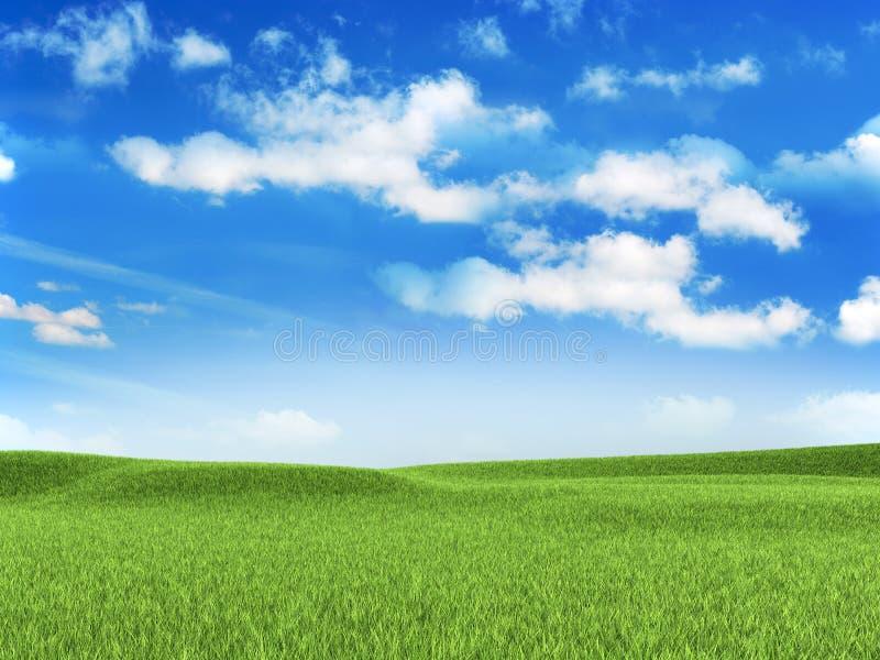 Naturhintergrund - Wiese lizenzfreies stockfoto