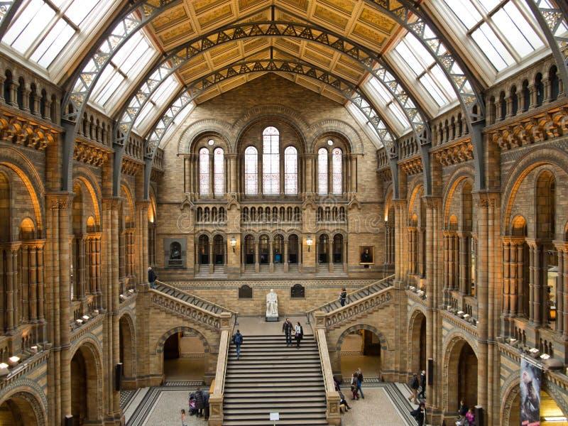 Naturhistoriamuseum royaltyfri foto