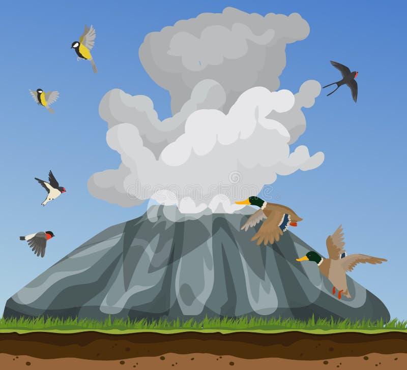 Naturillustration med små fåglar som flyger i blåa himlar som skrämmas av att röka som är vulcan Änder svalor, tomtits och vektor illustrationer
