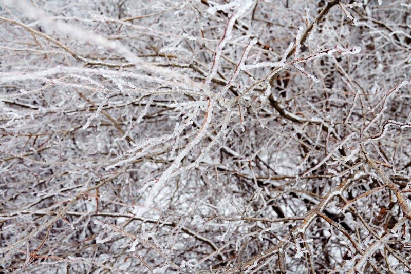 Naturkatastrofen i form av isregn kom till den sydliga regionen arkivbilder