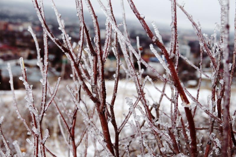 Naturkatastrofen i form av isregn kom till den sydliga regionen arkivbild