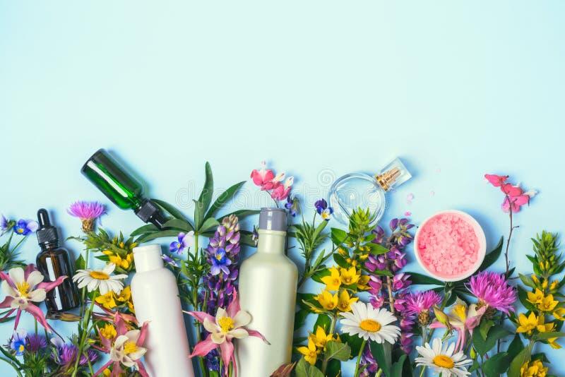 Naturkosmetik eingestellt Bioprodukte und wilde Kräuter und Blumen lizenzfreie stockfotografie