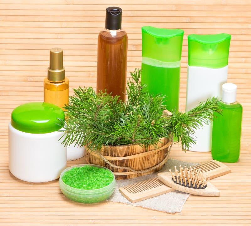 Naturkosmetik und Zubehör für Haargesundheit und -schönheit stockbild
