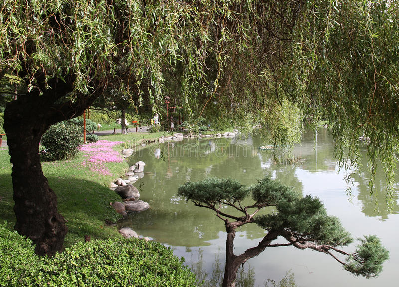 Naturlandschaft im japanischen Garten stockfotografie