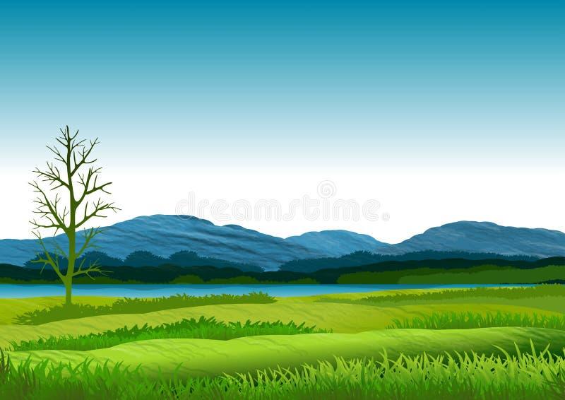 Naturlandschaft mit blauem Himmel, Bergen im Hintergrund und den grünen und blumigen Wiesen Abbildung lizenzfreie abbildung