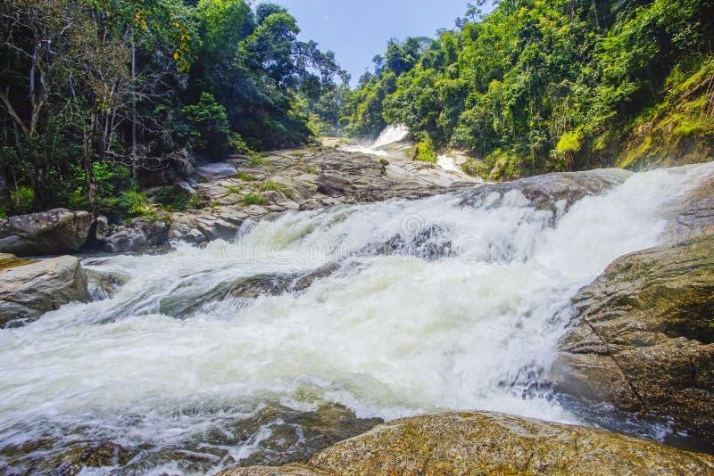 Naturlandskap av vattenfallkaskaden under ljus dag royaltyfria foton