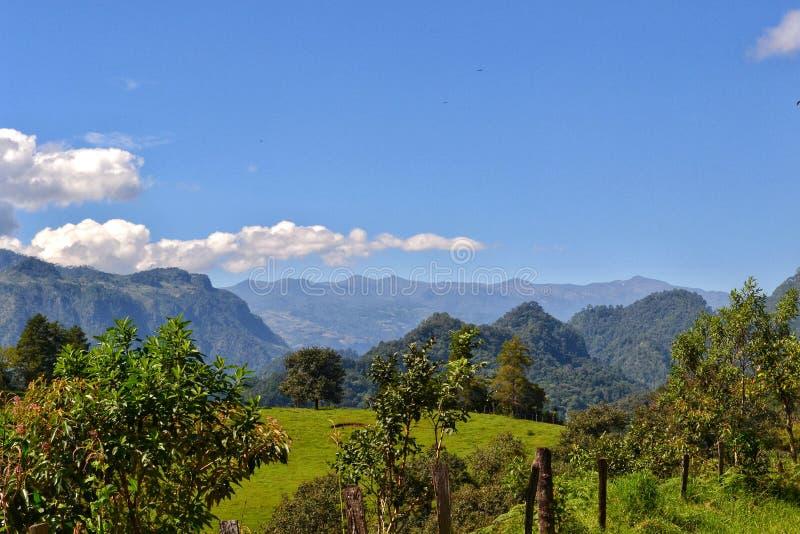 Naturlandskap, berg från xalapaen Mexiko royaltyfri foto