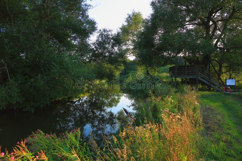 naturlandskap med en sikt av den lilla floden arkivbild