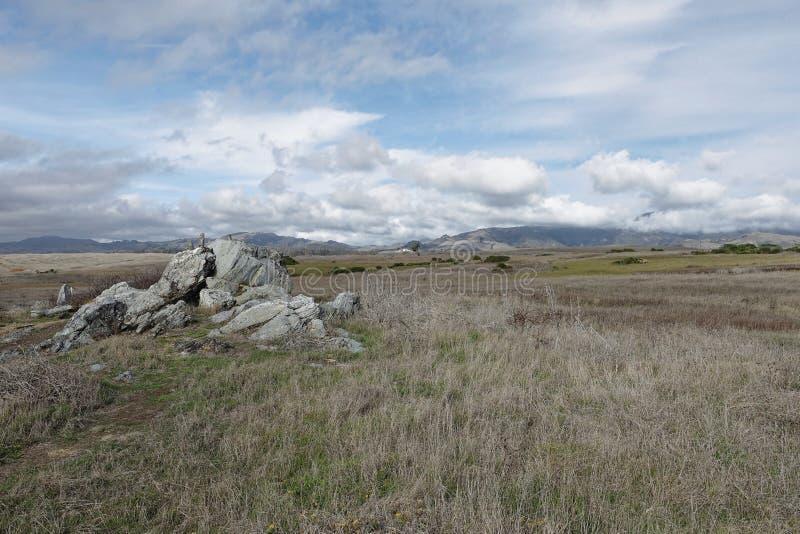 Naturlandskapet av fältet med vaggar bildande royaltyfri foto