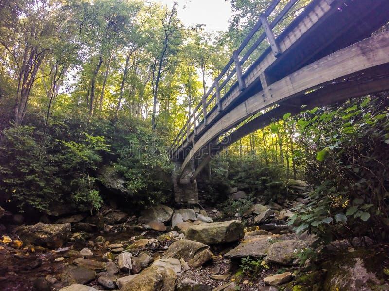 Naturlehrpfadszenen zu calloway Höchst-Nord-Carolina lizenzfreies stockbild