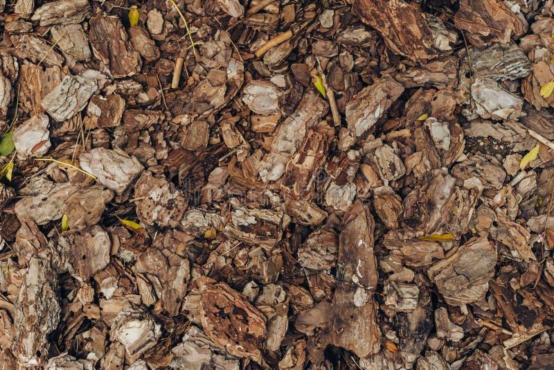 Naturlig bakgrund av röda och bruna stycken av komposttäckning för chip för trä för trädskäll för att arbeta i trädgården eller n royaltyfria bilder