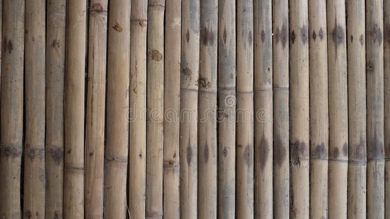 Naturlig bambugolvtextur arkivbild