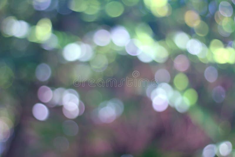 Naturlig bokeh, defocused vibrerande sidor för gröna växter royaltyfri fotografi