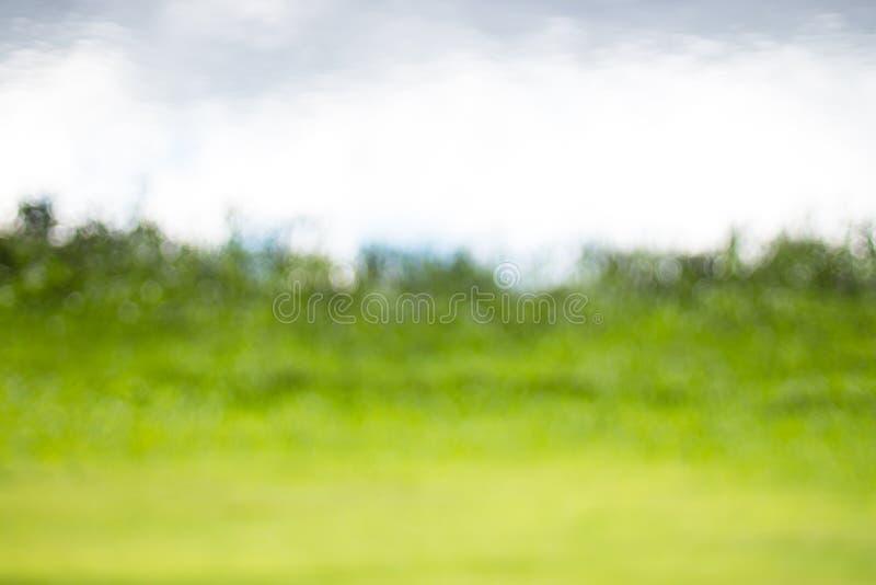 Naturlig bokehbakgrund, ny sund grön bio bakgrund med abstrakt suddig lövverk och ljust sommarsolljus arkivfoton
