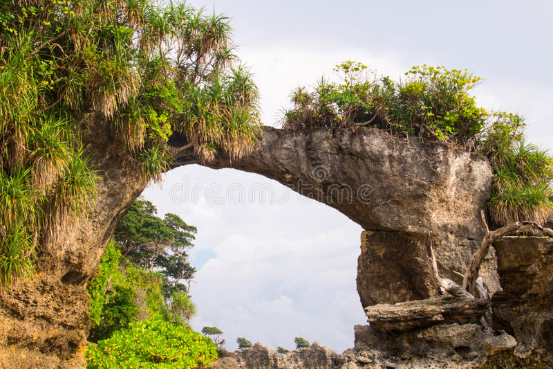 Naturlig bro på Neil Island royaltyfria foton