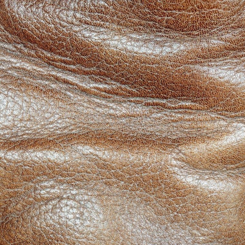 Naturlig brun läderyttersida Slitet sko ut royaltyfri bild