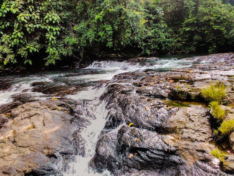 Naturlig flod Palembang, indonesia arkivfoton