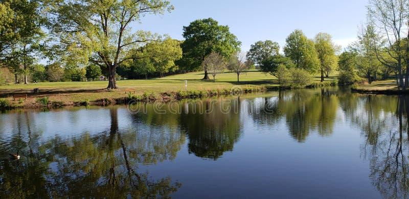 Naturlig härlig sjö royaltyfri foto