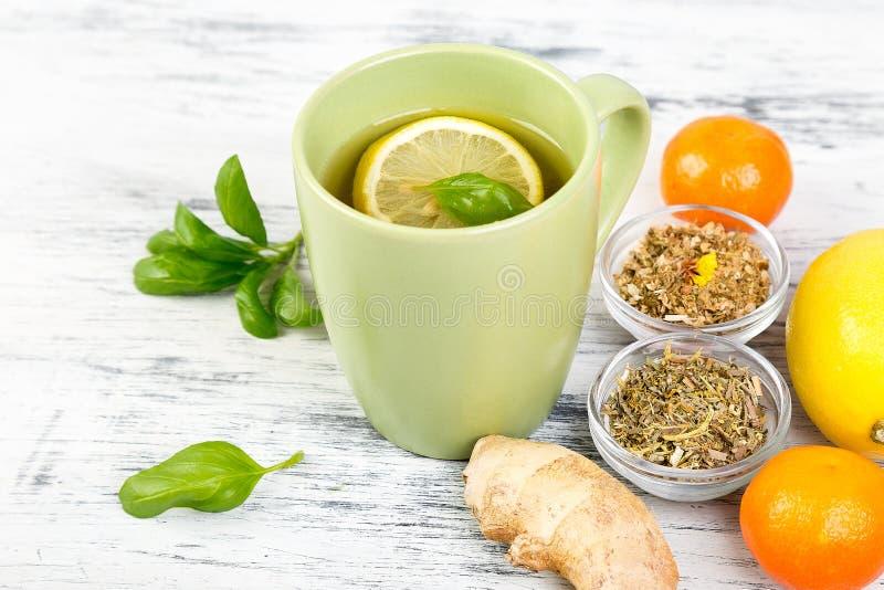 naturlig medicin Behandling för förkylningar royaltyfri bild
