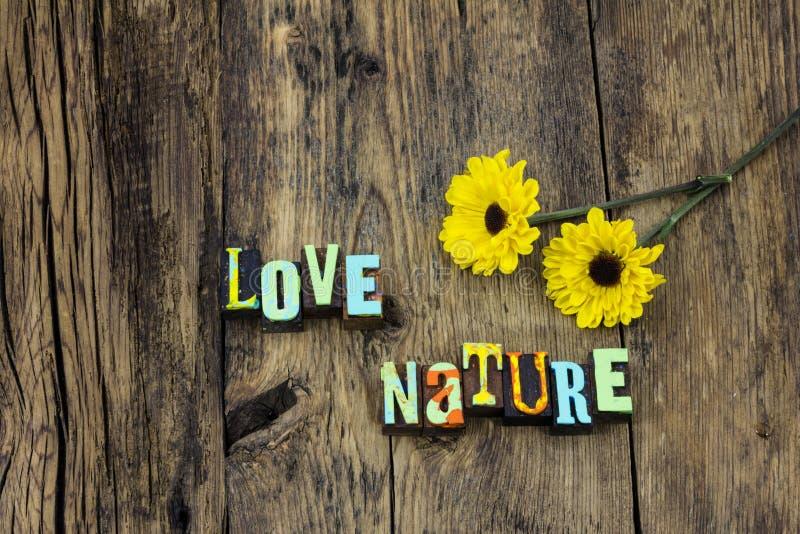 Naturlig miljö för förälskelsenaturjord att skydda ekosystem arkivbild