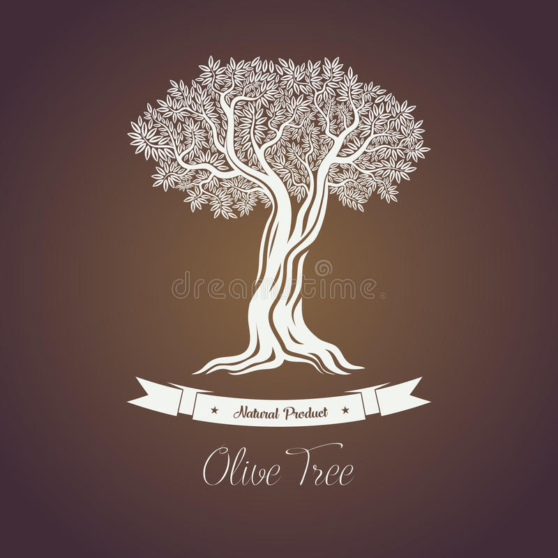 Naturlig olivoljaträdlogo för olivgrön dunge stock illustrationer