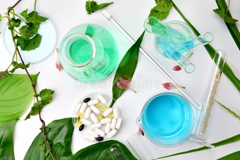 Naturlig organisk botanik och vetenskaplig glasföremål, alternativ örtmedicin, naturliga skönhetsprodukter för skönhetsmedel för  royaltyfri bild